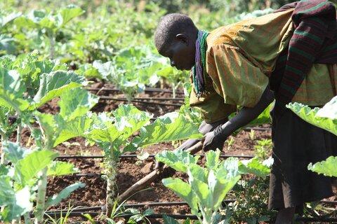 Gemeinsam gegen den Klimawandel in Malawi — wie WFP die Widerstandsfähigkeit von Kleinbauern stärkt
