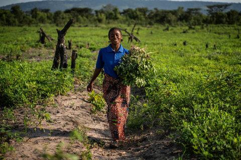 Essen für den Frieden: Was WFP & FAO in DRK gegen Konflikt und Hunger tun
