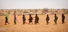 Risiken minimieren statt Katastrophen managen – WFP auf der Klimakonferenz in Bonn